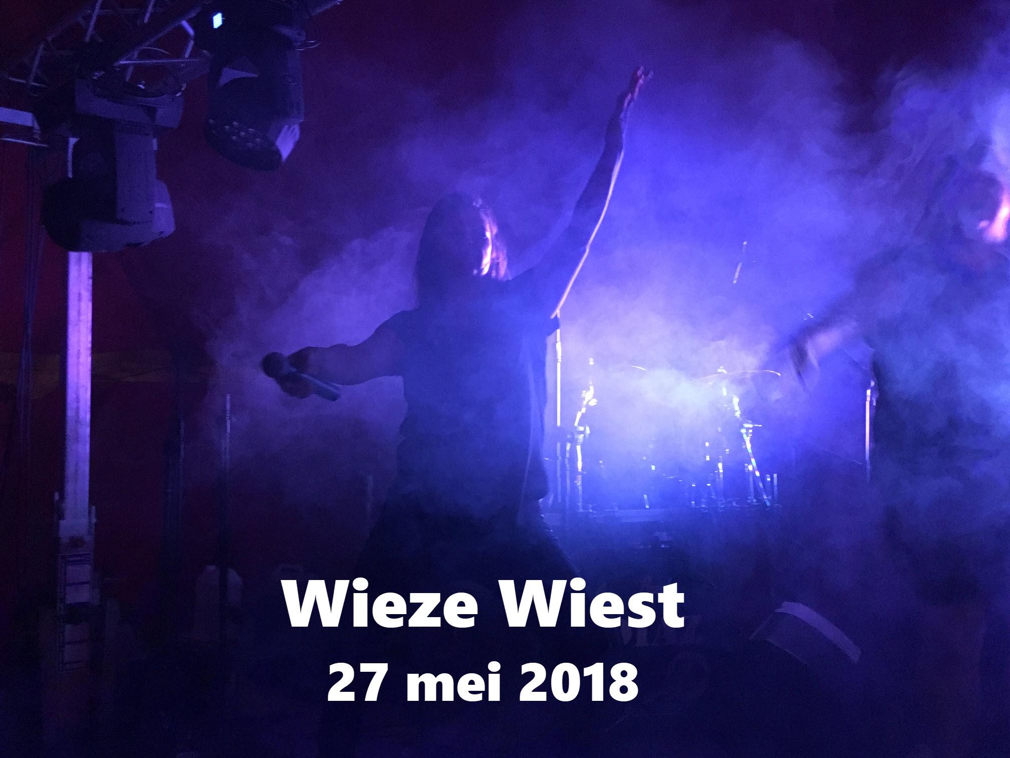 Wieze Wiest 2018 1