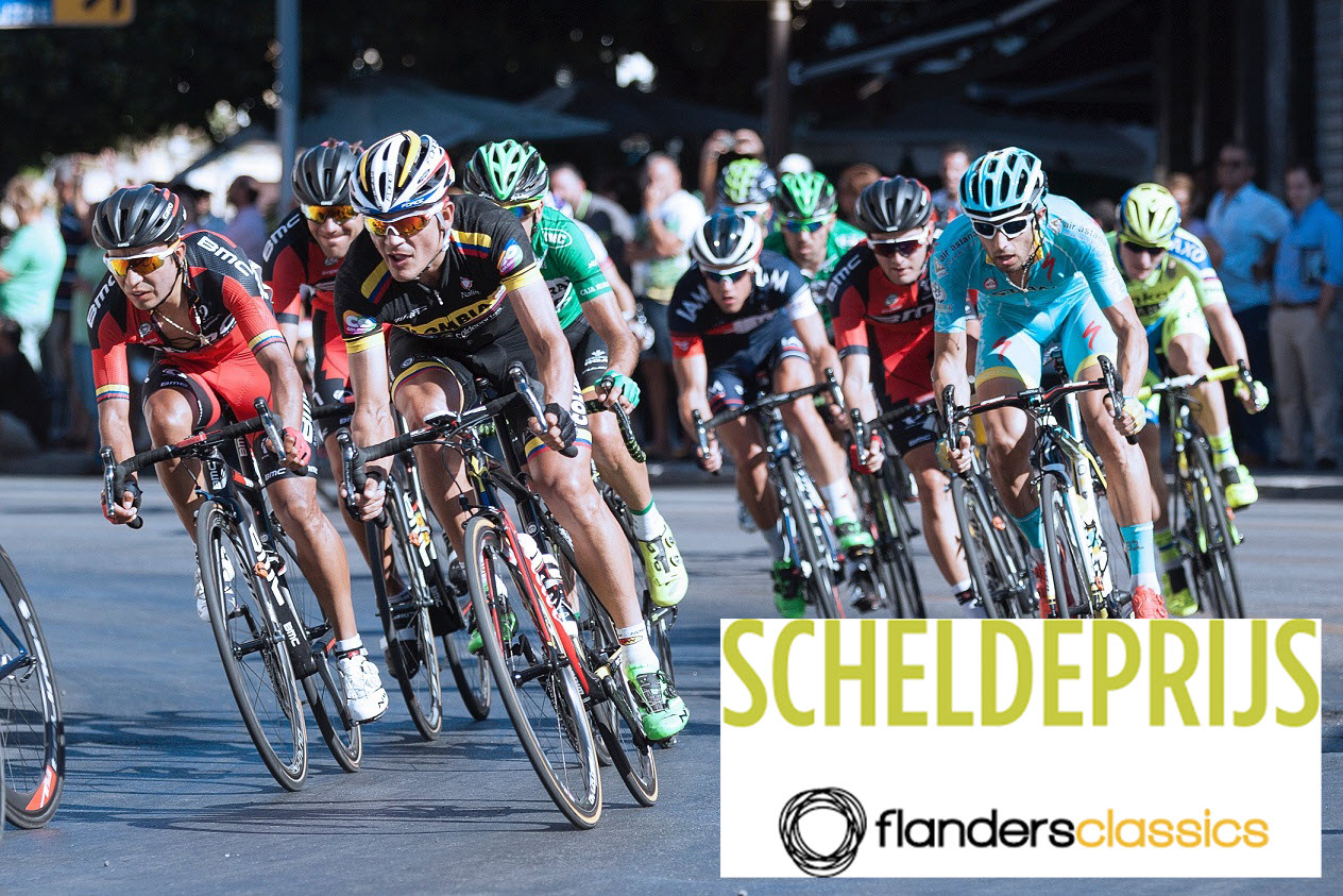 Flanders Classic Scheldeprijs 2019